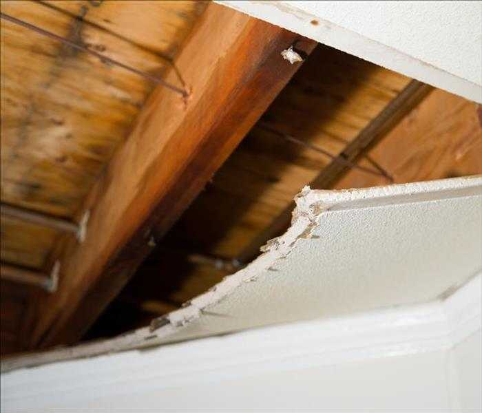 Water Damage in a Pleasanton Ceiling
