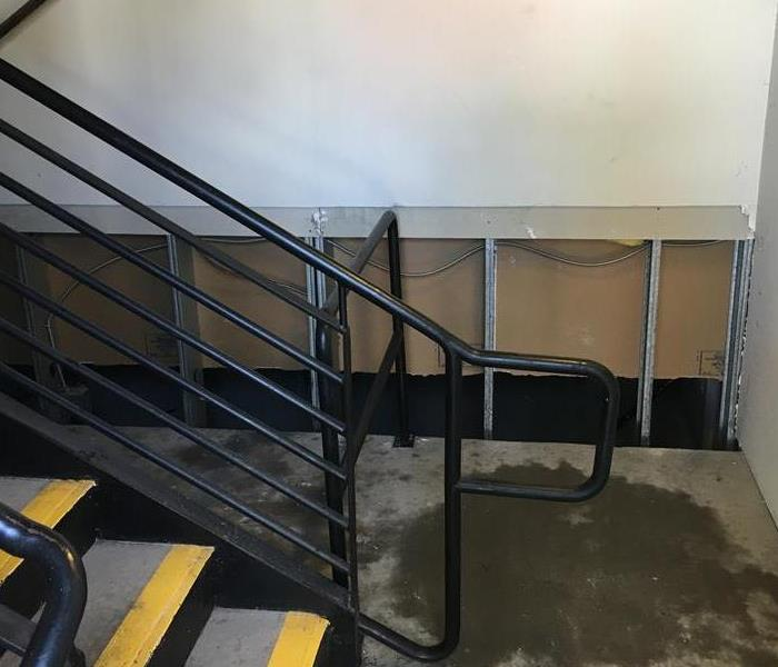 Commercial stairwell that was covered in mold