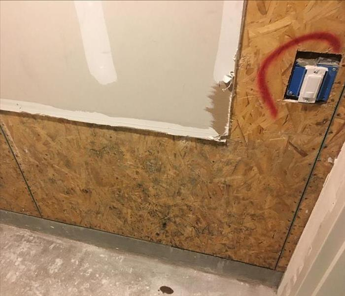 Mold Remediation Pleasanton/Dublin residents: Smelling a musty odor but can't see anything?