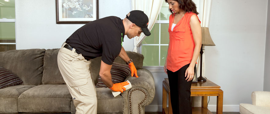 Pleasanton, CA carpet upholstery cleaning