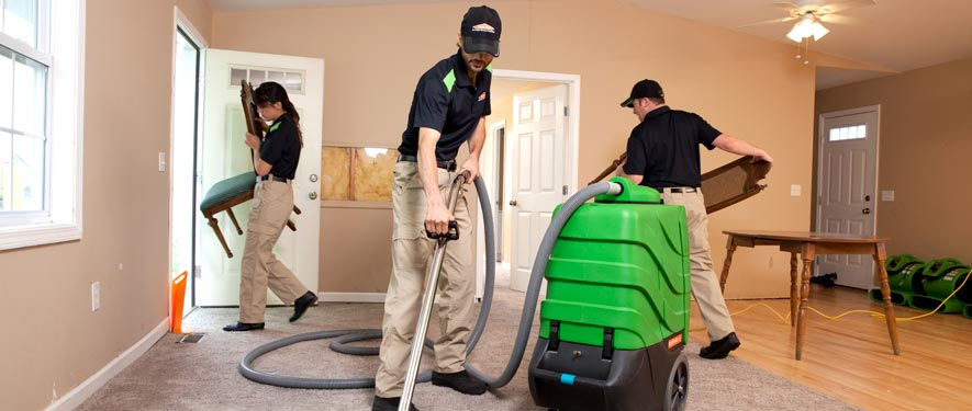 Pleasanton, CA cleaning services